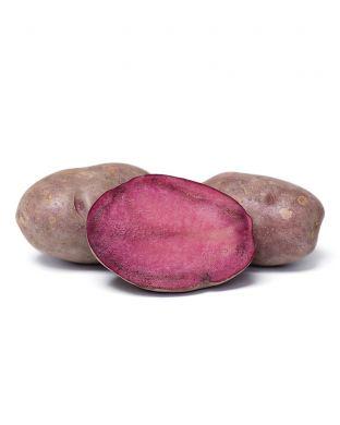 Siemenperuna Mulberry Beauty