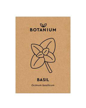 Botanium siemenet - Basilika