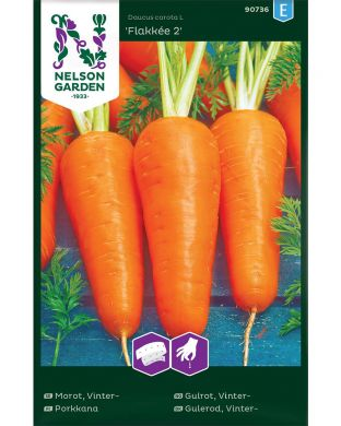 Porkkana Flakkee 2