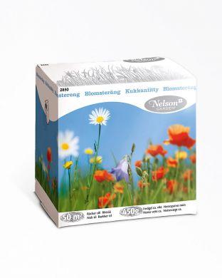Kukkaniitty-nurmikukkaseos