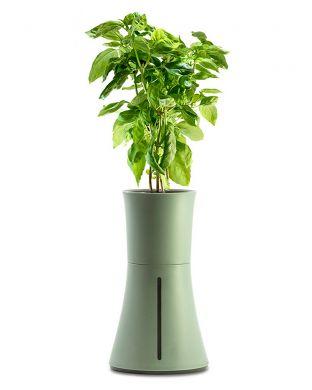 Botanium-vesiviljelyruukku vihreä