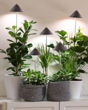 SunLite LED- kasvivalo harmaa