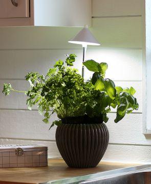 SunLite LED- kasvivalo valkoinen