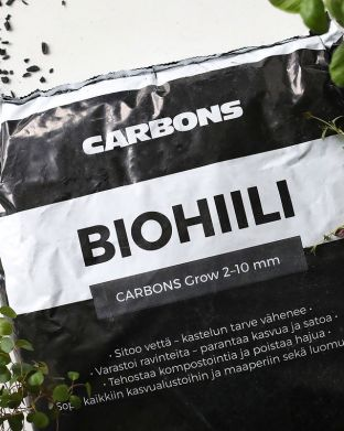 Biohiili