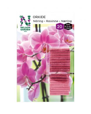 Ravinnepuikko Orkidea
