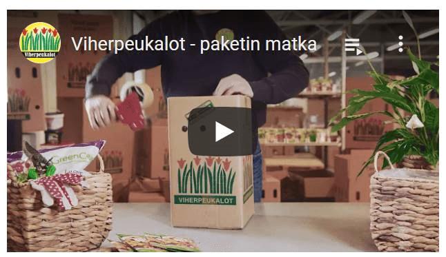 Video paketinmatka